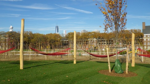 Hammock Grove looking toward Lower Manhattan / Photo: Trust for Governors Island