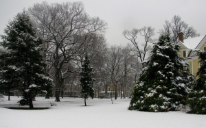 A view into snow covered Nolan Park.