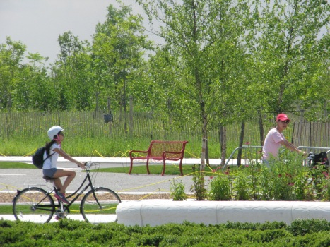 Nine days left to bike in the new 30 acres of park on Governors Island. Image by Lexi Quint, courtesy of the Trust.